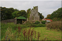 R4136 : Castles of Munster: Ballingarry, Limerick by Mike Searle