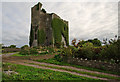 R3242 : Castles of Munster: Lisnacullia, Limerick (2) by Mike Searle