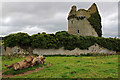 S1126 : Castles of Munster: Moorstown, Tipperary (1) by Mike Searle