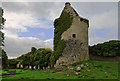 S1126 : Castles of Munster: Moorstown, Tipperary(2) by Mike Searle