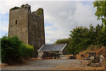 S1957 : Castles of Munster: Borris or Black Castle, Tipperary by Mike Searle