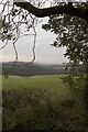 SE8748 : Nunburnholme Wold by Paul Harrop