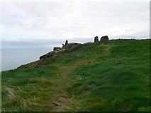 T3294 : Black Castle, Wicklow by Eirian Evans