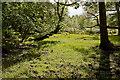 SU2705 : Warwickslade Cutting: original stream bed by Peter Facey