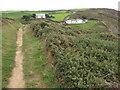 SS1901 : Coast path near Wanson by Philip Halling