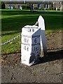 NO1040 : Milestone, Spittalfield by Maigheach-gheal
