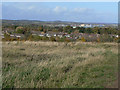 SK5344 : Tip top view of Hempshill Vale by Alan Murray-Rust