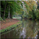 SK0220 : Trent and Mersey Canal at Bishton, Staffordshire by Roger  Kidd