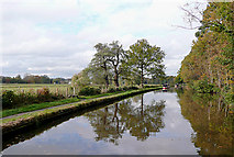 SJ9922 : Staffordshire and Worcestershire Canal near Great Haywood by Roger  Kidd
