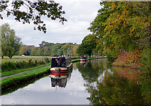 SJ9922 : Staffordshire and Worcestershire Canal near Shugborough, Staffordshire by Roger  Kidd