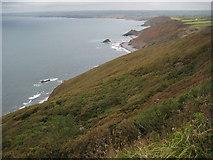 SX1699 : Bynorth Cliff by Philip Halling