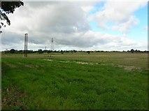 SE6350 : Fields off Low Lane by DS Pugh