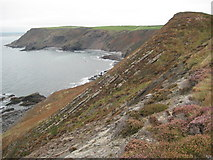 SX1497 : Cleave Strand viewed from Castle Point by Philip Halling