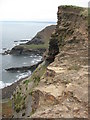 SX1397 : Above Pencannow Point by Philip Halling