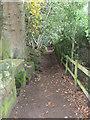 SJ5256 : Sandstone Trail by Eirian Evans