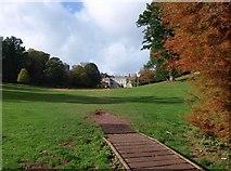 SX8963 : Cricket pitch at Cockington by Derek Harper