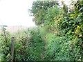 ST7461 : Footpath, Combe Down by Maigheach-gheal