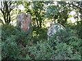 NY6165 : St. Cuthbert's Church, Upper Denton - overgrown gravestones by Mike Quinn