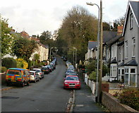 ST3288 : Woodland Road, Newport by Jaggery