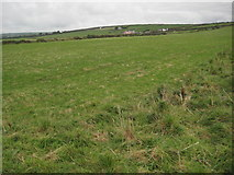 SX0483 : Farmland above Tregardock Cliff by Philip Halling