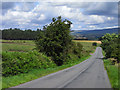 NY5338 : Road above Lazonby by Andrew Smith