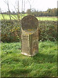 SK2640 : The Langley & Brailsford parish boundary marker - detail by Richard Law
