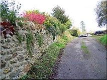ST5707 : Footpath, Melbury Osmond by Maigheach-gheal