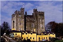 R4560 : Bunratty Castle & Durty Nelly's Pub by Joseph Mischyshyn