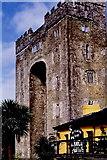 R4560 : Bunratty Castle by Joseph Mischyshyn