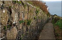 J4893 : Path at the Blackhead lighthouse by Albert Bridge