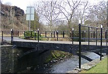 SS8591 : The cast iron Talbot Bridge, Maesteg by David Lewis