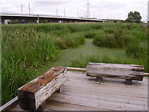 TQ5479 : Channel Tunnel Rail Link at Rainham Marshes RSPB Reserve by Kenneth Yarham