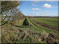 TF4503 : Edge of Maltmas Farm by Hugh Venables