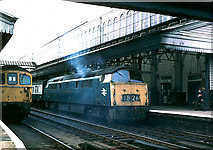 SX9193 : 1009 Western class diesel, 'Western Pathfinder' at Exeter St. David's by Andy Waddington