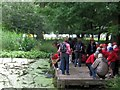 SP9713 : School Party at the pond near the Bridgewater Monument, Ashridge by Chris Reynolds