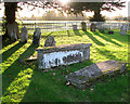 TG1901 : The church of St Mary Magdalen - churchyard by Evelyn Simak