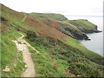 SX0589 : Coast path approaching Tintagel by Philip Halling