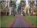 TF6728 : Entrance to Scenic Drive, Sandringham (autumn) by Paul Shreeve