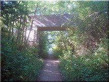 SK4862 : Teversal to Pleasley railway - 1 by Trevor Rickard