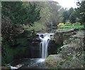 NZ2567 : Jesmond Dene - The Waterfall by Anthony Foster