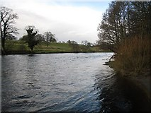 NZ0416 : River Tees in spate at Barnard Castle by Philip Barker