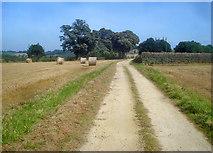 SK4665 : Farm track at Ault Hucknall by Trevor Rickard