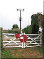 TM1985 : The Waveney Valley Line - farm gates by Evelyn Simak