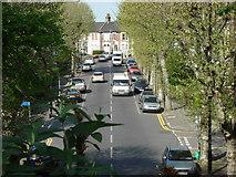TQ3187 : Upper Tollington Park from Parkland Walk by Oxyman