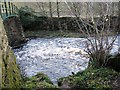 NZ0120 : River Balder in spate at Cotherstone by Philip Barker