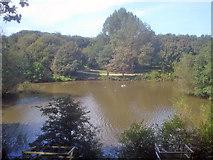 SK4564 : Miller's Pond - 1 by Trevor Rickard