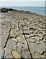 M1308 : Fretted limestone south of Fanore beach by Andy Waddington
