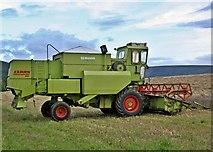 NZ5906 : Harvest Time, Bank Foot Farm by Paul Buckingham