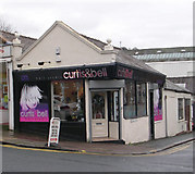 SE1039 : curtis & bell hair studio - Park Road by Betty Longbottom