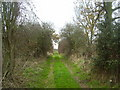 TM2085 : Former trackbed of the Waveney Valley Railway by Ashley Dace